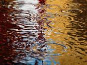 Rainpuddle
